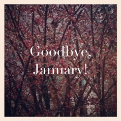 goodbye-January-miniaturka@2x