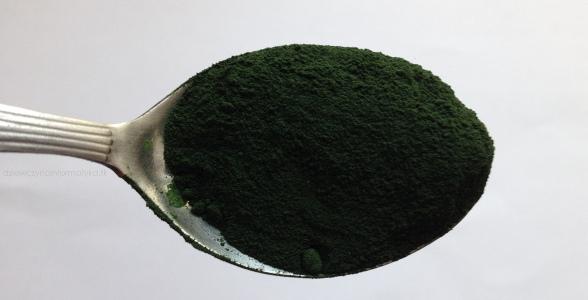 spirulina-magiczna alga (6)