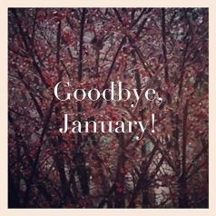 goodbye-January-miniaturka@2x